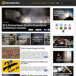 Israel Defense Forces blog