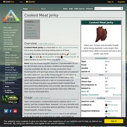 Cooked Meat Jerky - Official ARK: Survival Evolved Wiki