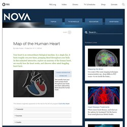 NOVA - Official Website