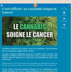 C'est officiel : Le cannabis soigne le Cancer