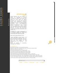 Site officiel de la Galerie Hamon [Artistes]