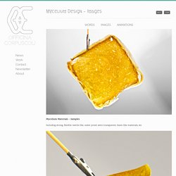 Officina Corpuscoli » Mycelium Design – Images