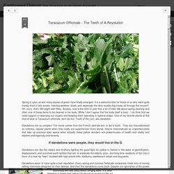 Earthseed Detroit: Taraxacum Officinale - The Teeth of A Revolution