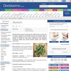 Romarin (Rosmarinus officinalis) : propriétés, bienfaits de cette plante en phytothérapie