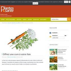 Offrez une cure à votre foie - Faites-le vous-même ! - Plantes & santé