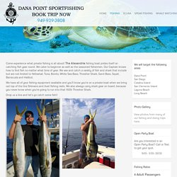 Near Shore and Offshore Fishing With Dana Point Sportfishing