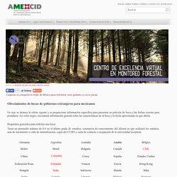 AMEXCID - Ofrecimientos de becas de gobiernos extranjeros para mexicanos
