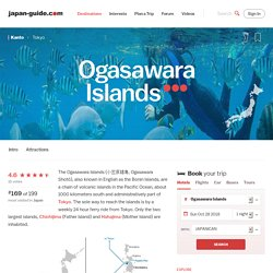 Ogasawara Islands Travel Guide