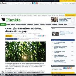 OGM : plus de surfaces cultivées, dans moins de pays