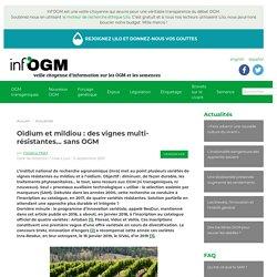 INFOGM 15/05/17 Oïdium et mildiou : des vignes multi-résistantes... sans OGM