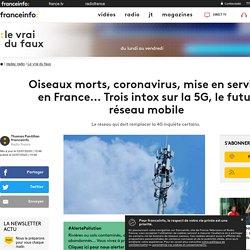 Oiseaux morts, coronavirus, mise en service en France... Trois intox sur la 5G, le futur réseau mobile