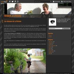 Les oiseaux de La Brenne - TRIBAIN, a Lifetime