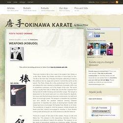 karateblogger.com