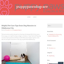 Helpful Pet Care Tips from Dog Nannies in Oklahoma City