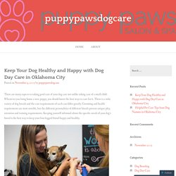 Keep Your Dog Healthy and Happy with Dog Day Care in Oklahoma City