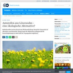 Autoreifen aus Löwenzahn - eine ökologische Alternative?