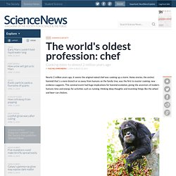 The World's Oldest Profession: Chef