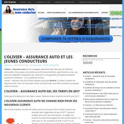 L'olivier – assurance auto et les jeunes conducteurs