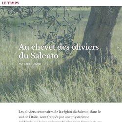 BLOG LE TEMPS 17/04/15 Au chevet des oliviers du Salento