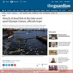 Stench of dead fish in Rio lake won't spoil Olympic Games, officials hope