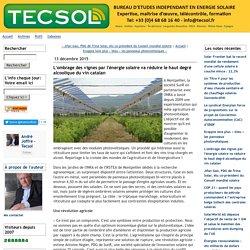 L'ombrage des vignes par l'énergie solaire va réduire le haut degré alcoolique du vin catalan