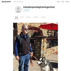 inlandempiredogtrainingschool (inlandempiredogtrainingschool) on Bloglovin'