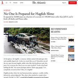 No One Is Prepared for Hagfish Slime