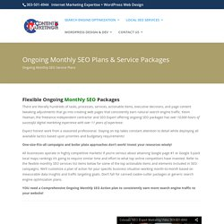 Ongoing SEO Monthly Plans and Services, SEO Monthly Packages