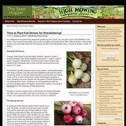 High Mowing Organic Seeds' Blog – The Seed Hopper