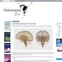 Onironauta Jovi: La Glándula Pineal, El Tercer Ojo
