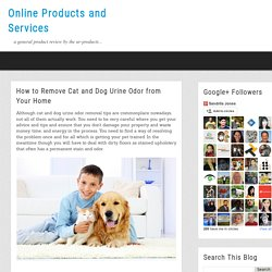 Online Products and Services: How to Remove Cat and Dog Urine Odor from Your Home