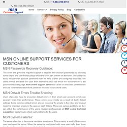 MSN Online Support Services USA
