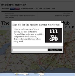The Online Farm-To-Table Hub