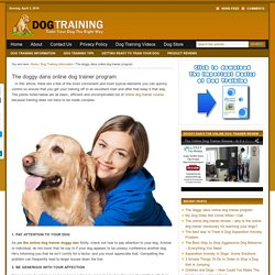 Doggy dan online dog trainer reviews