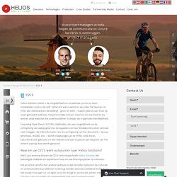 Outsourcing CSS 3 Ontwikkeling agency