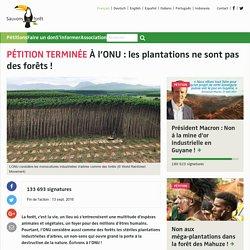 À l'ONU : les plantations ne sont pas des forêts