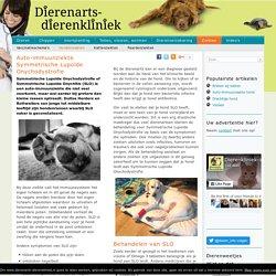 Symmetrische Lupoïde Onychodystrofie (SLO) – Dierenarts-dierenkliniek
