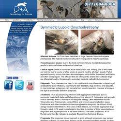 Symmetric Lupoid Onychodystrophy