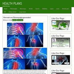 Oorzaak van Fibromyalgie gevonden! – HEALTH PLANS