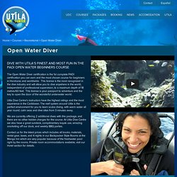 Open Water Diver | Utila Dive Center