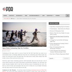Open Water Swimming Tips For Newbies