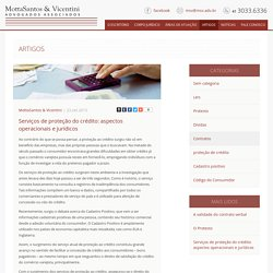 Serviços de proteção do crédito: aspectos operacionais e jurídicos