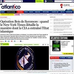 Opération Bois de Sycomore : quand le New York Times détaille la manière dont la CIA a entraîné l'Etat islamique