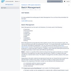 ERP Operations - Batch Management