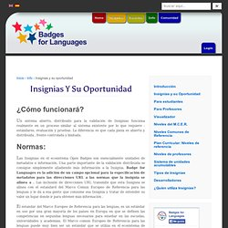 Insignias y su oportunidad - Badges and their opportunity