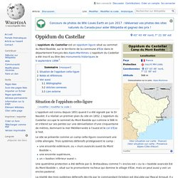 Oppidum du Castellar