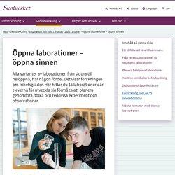 Öppna laborationer – öppna sinnen