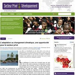 L'adaptation au changement climatique, une opportunité pour le secteur privé : Blog Secteur Privé et Développement (SP&D)