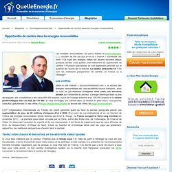 Opportunités de carrière dans les énergies renouvelables