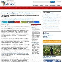 West Africa: Huge Opportunities for Agricultural Growth in West Africa